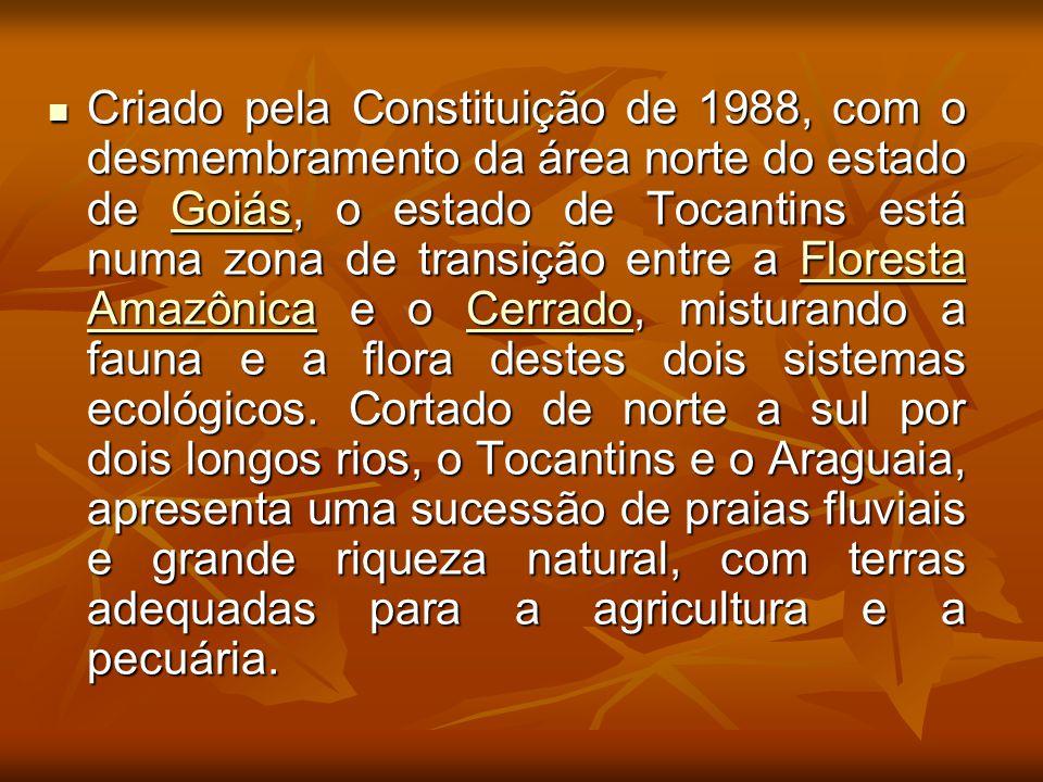 Criado pela Constituição de 1988, com o desmembramento da área norte do estado de Goiás, o estado de Tocantins está numa zona de transição entre a Floresta Amazônica e o Cerrado, misturando a fauna e a flora destes dois sistemas ecológicos.