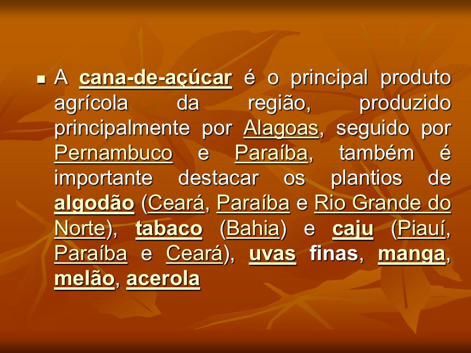 A cana-de-açúcar é o principal produto agrícola da região, produzido principalmente por Alagoas, seguido por Pernambuco e Paraíba, também é importante destacar os plantios de algodão (Ceará, Paraíba e Rio Grande do Norte), tabaco (Bahia) e caju (Piauí, Paraíba e Ceará), uvas finas, manga, melão, acerola