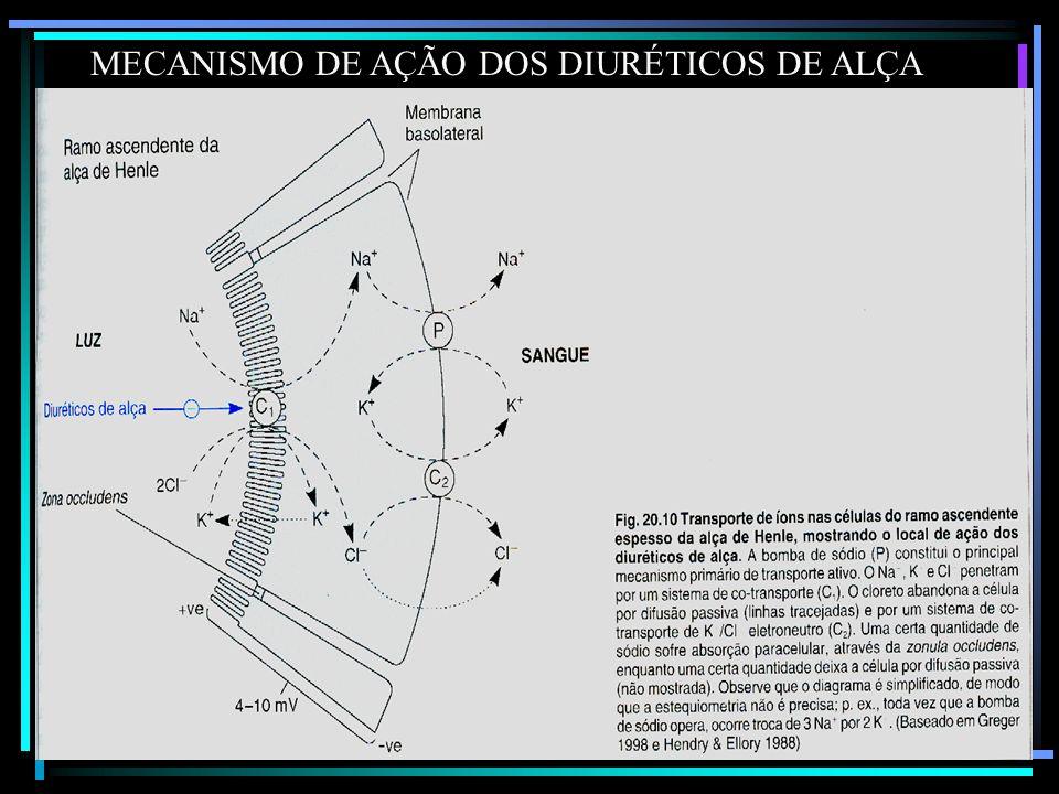 MECANISMO DE AÇÃO DOS DIURÉTICOS DE ALÇA