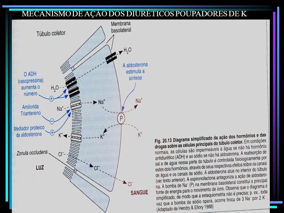 MECANISMO DE AÇÃO DOS DIURÉTICOS POUPADORES DE K