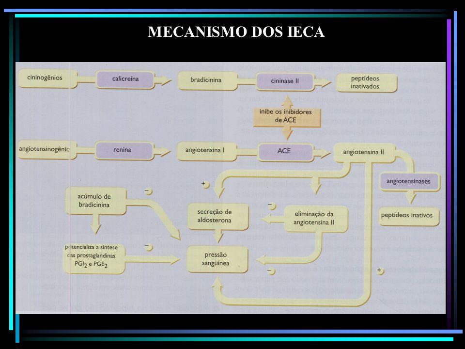 MECANISMO DOS IECA