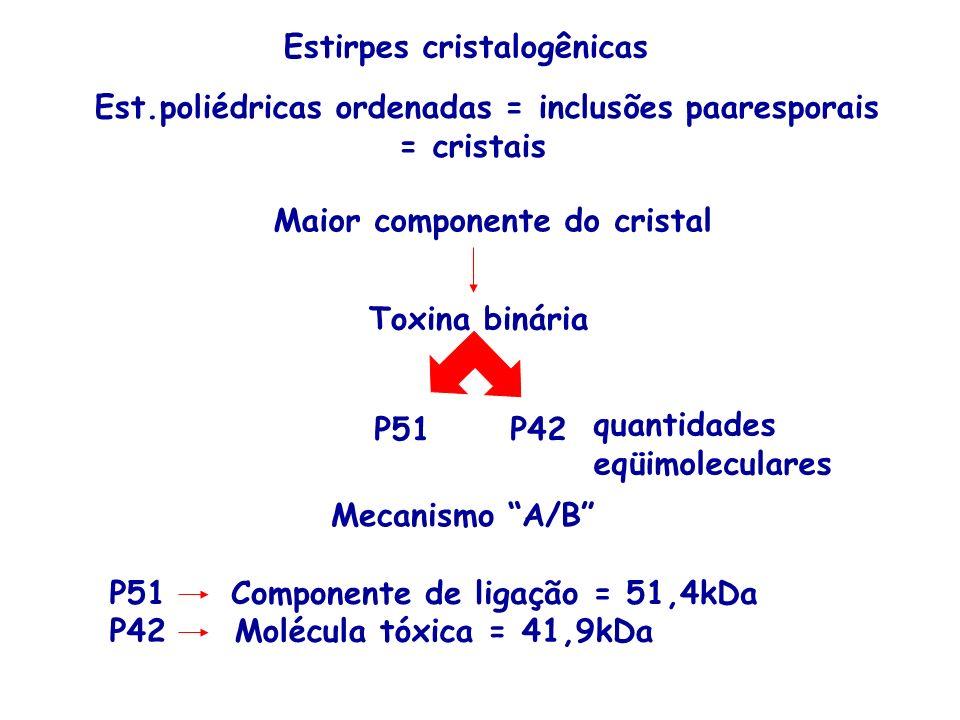 Estirpes cristalogênicas