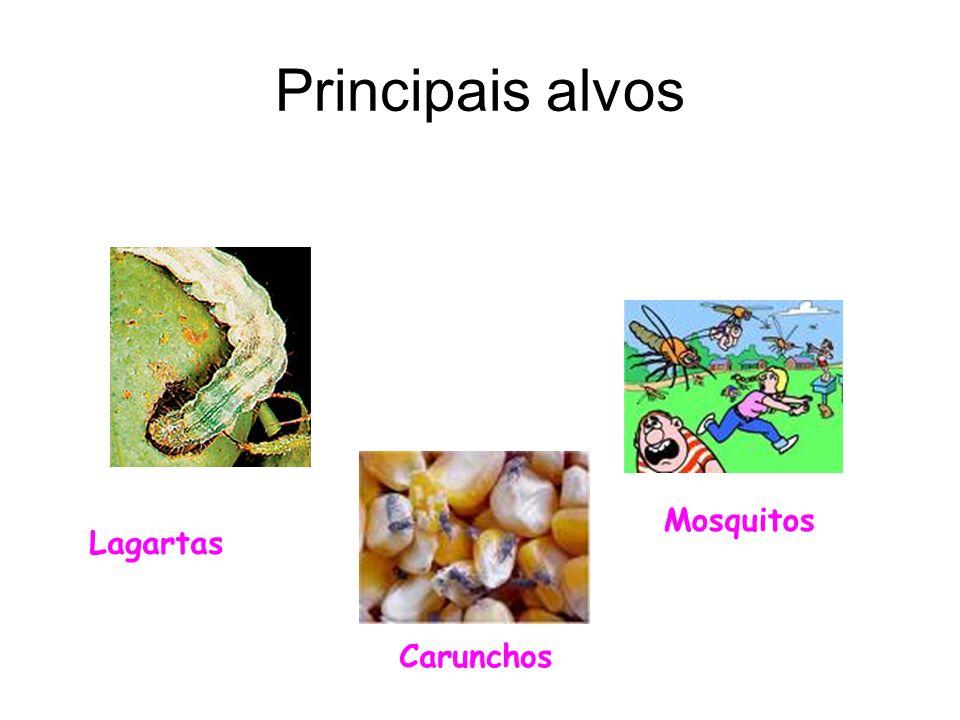 Principais alvos Mosquitos Lagartas Carunchos