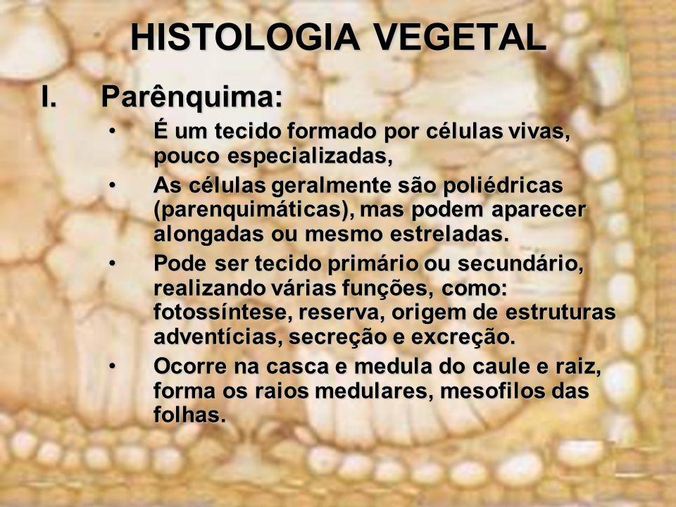 HISTOLOGIA VEGETAL Parênquima:
