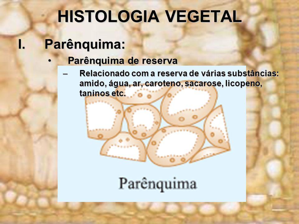 HISTOLOGIA VEGETAL Parênquima: Parênquima de reserva