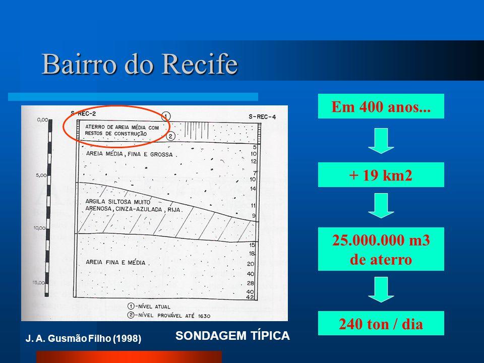 Bairro do Recife Em 400 anos... + 19 km2 25.000.000 m3 de aterro