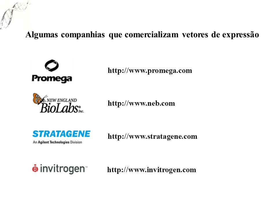 Algumas companhias que comercializam vetores de expressão