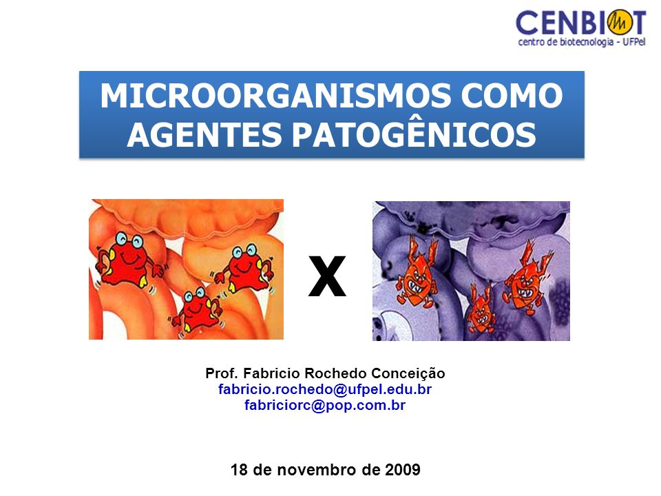 X MICROORGANISMOS COMO AGENTES PATOGÊNICOS 18 de novembro de 2009
