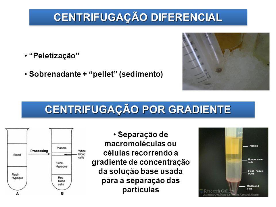 CENTRIFUGAÇÃO DIFERENCIAL CENTRIFUGAÇÃO POR GRADIENTE