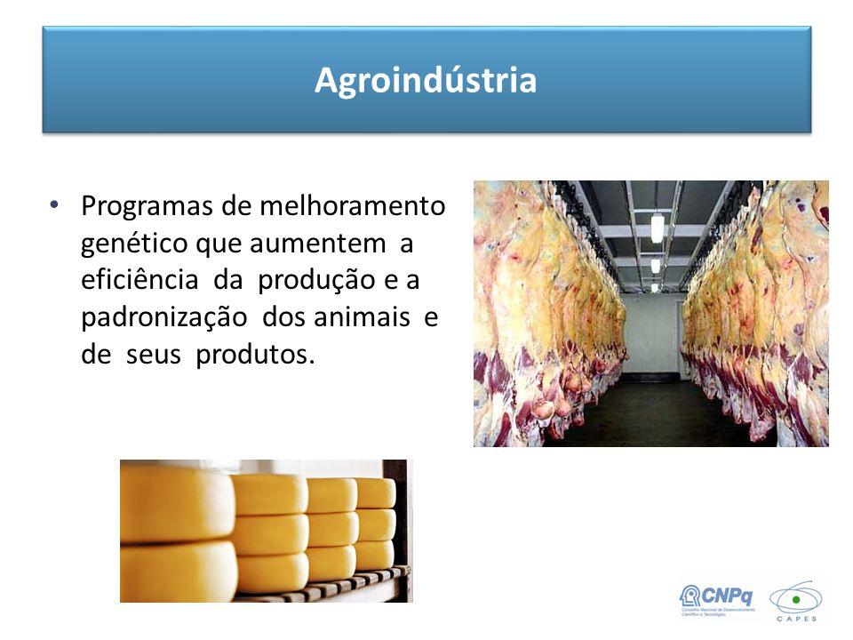 Agroindústria Programas de melhoramento genético que aumentem a eficiência da produção e a padronização dos animais e de seus produtos.