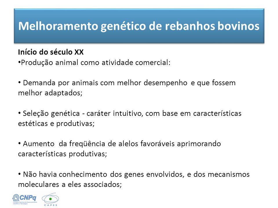 Melhoramento genético de rebanhos bovinos