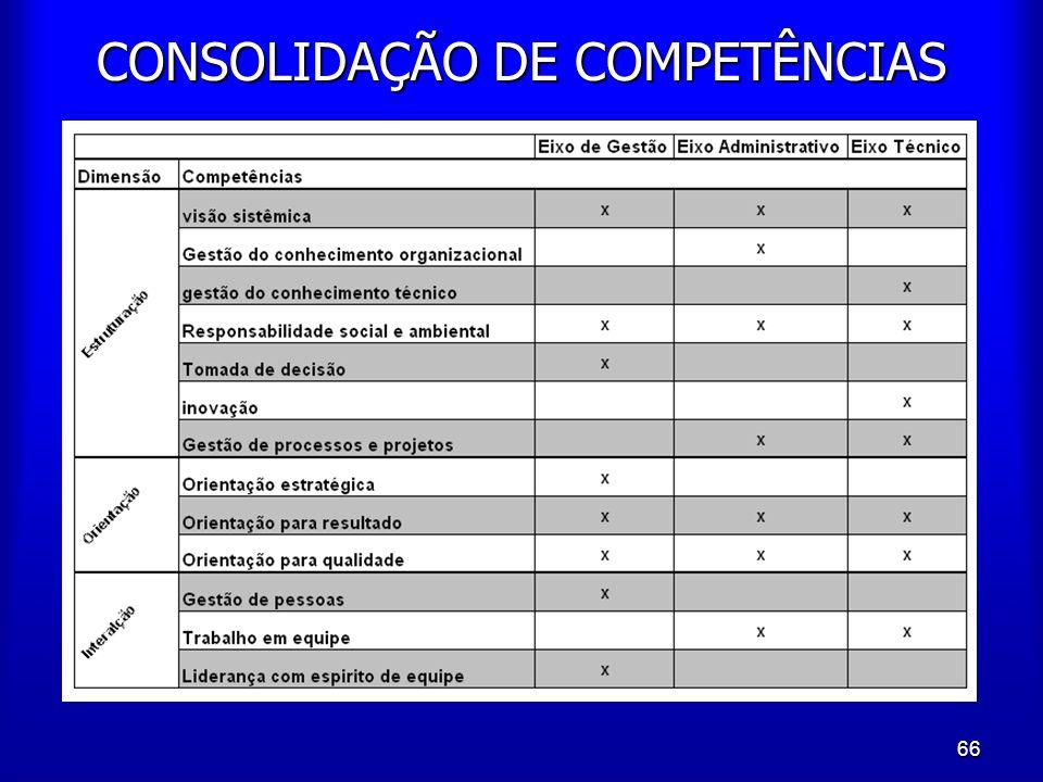 CONSOLIDAÇÃO DE COMPETÊNCIAS