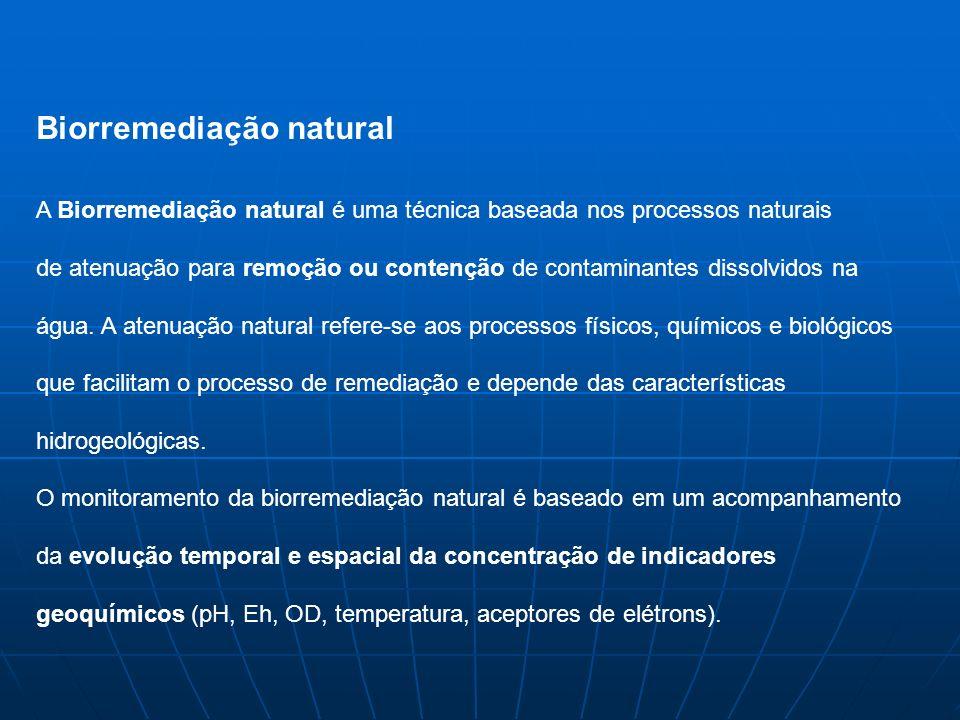Biorremediação natural