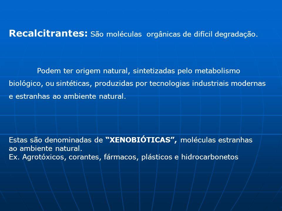 Recalcitrantes: São moléculas orgânicas de difícil degradação.