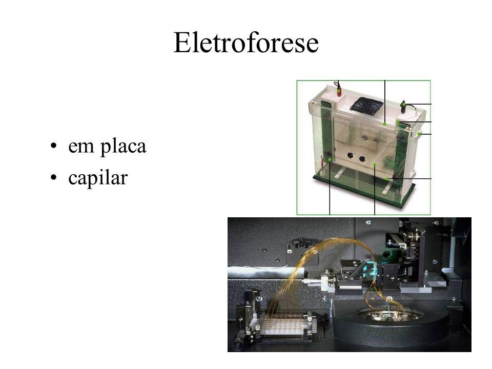 Eletroforese em placa capilar