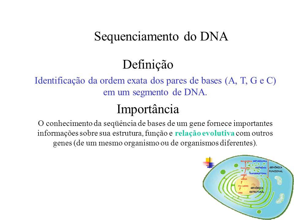 Sequenciamento do DNA Definição Importância