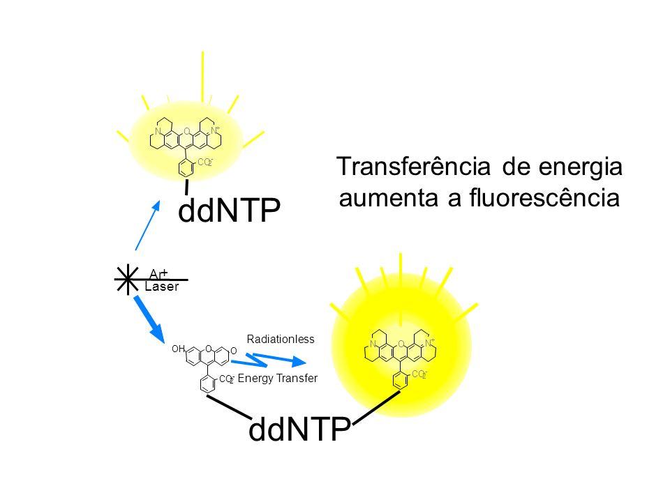 Transferência de energia aumenta a fluorescência