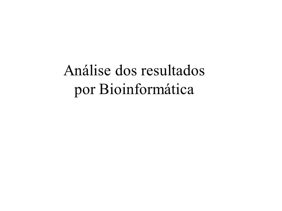 Análise dos resultados por Bioinformática