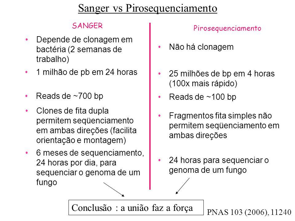 Sanger vs Pirosequenciamento