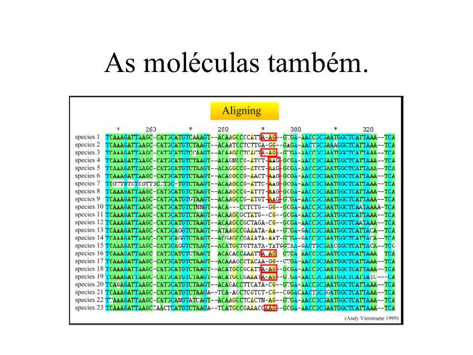 As moléculas também.