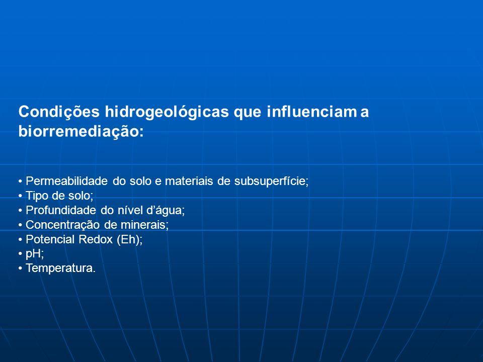 Condições hidrogeológicas que influenciam a biorremediação: