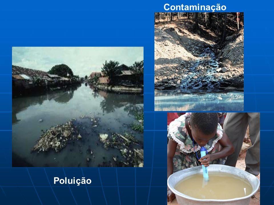 Contaminação Poluição