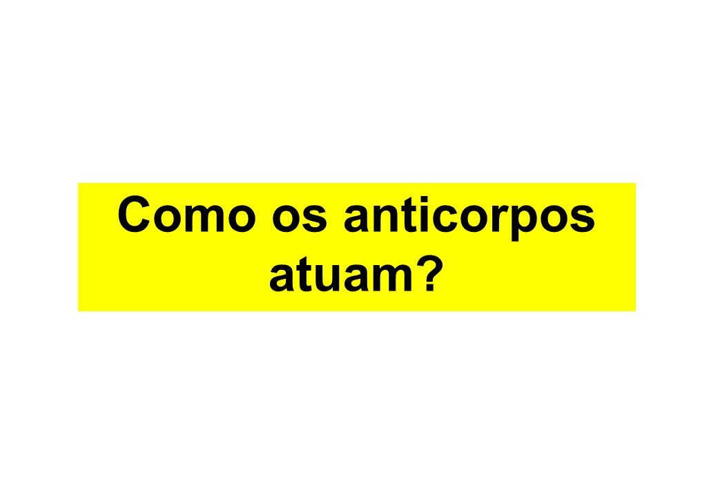 Como os anticorpos atuam