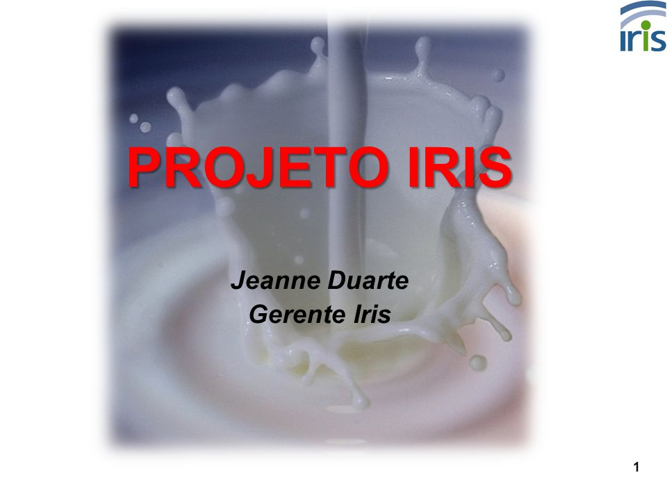 PROJETO IRIS Jeanne Duarte Gerente Iris