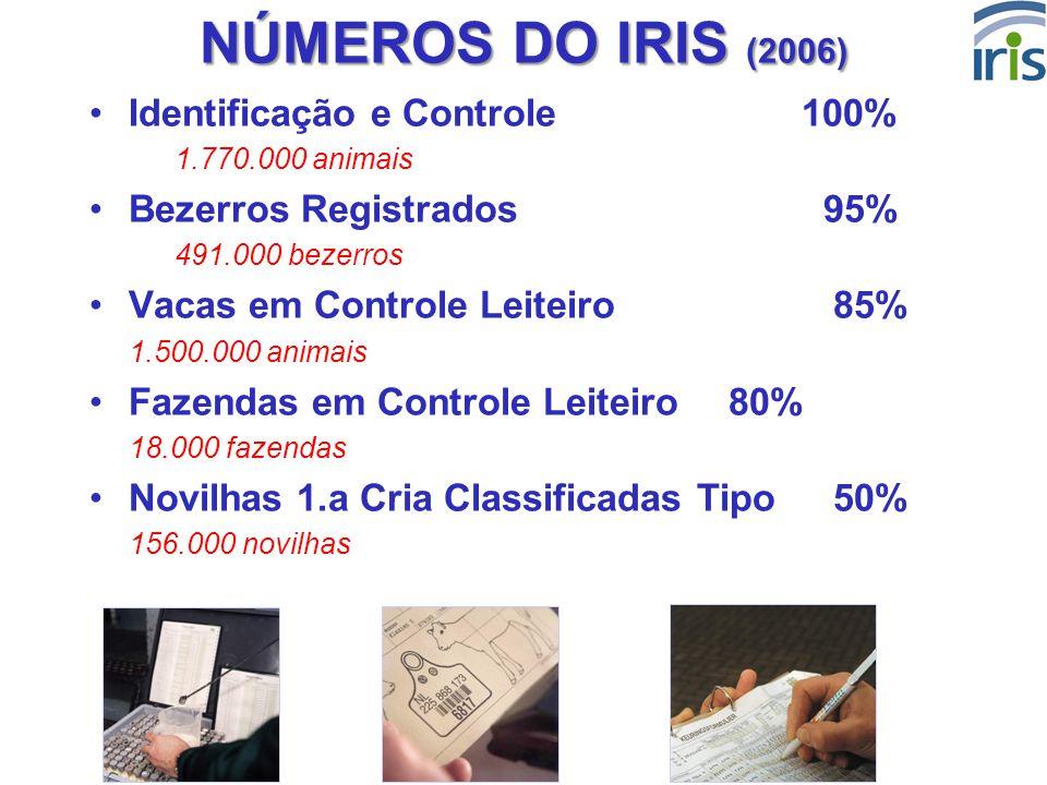 NÚMEROS DO IRIS (2006) Identificação e Controle 100%