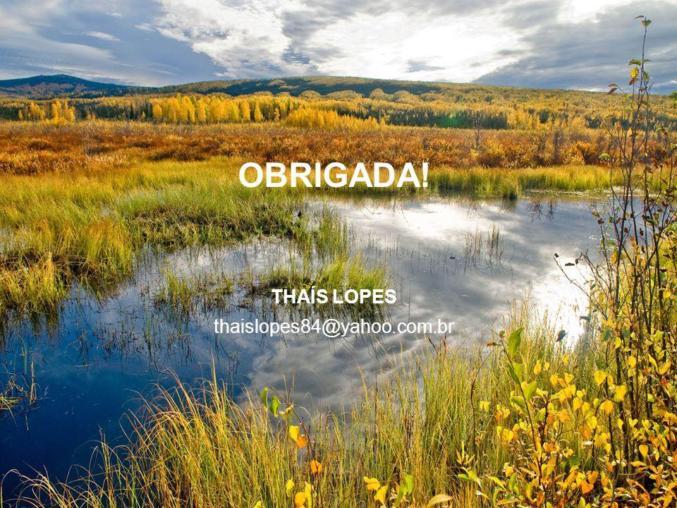 OBRIGADA! THAÍS LOPES thaislopes84@yahoo.com.br