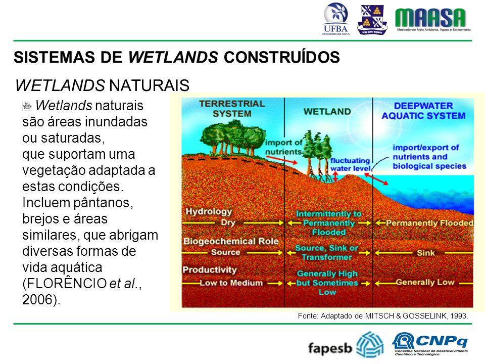 SISTEMAS DE WETLANDS CONSTRUÍDOS