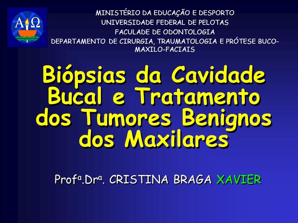 Profa.Dra. CRISTINA BRAGA XAVIER
