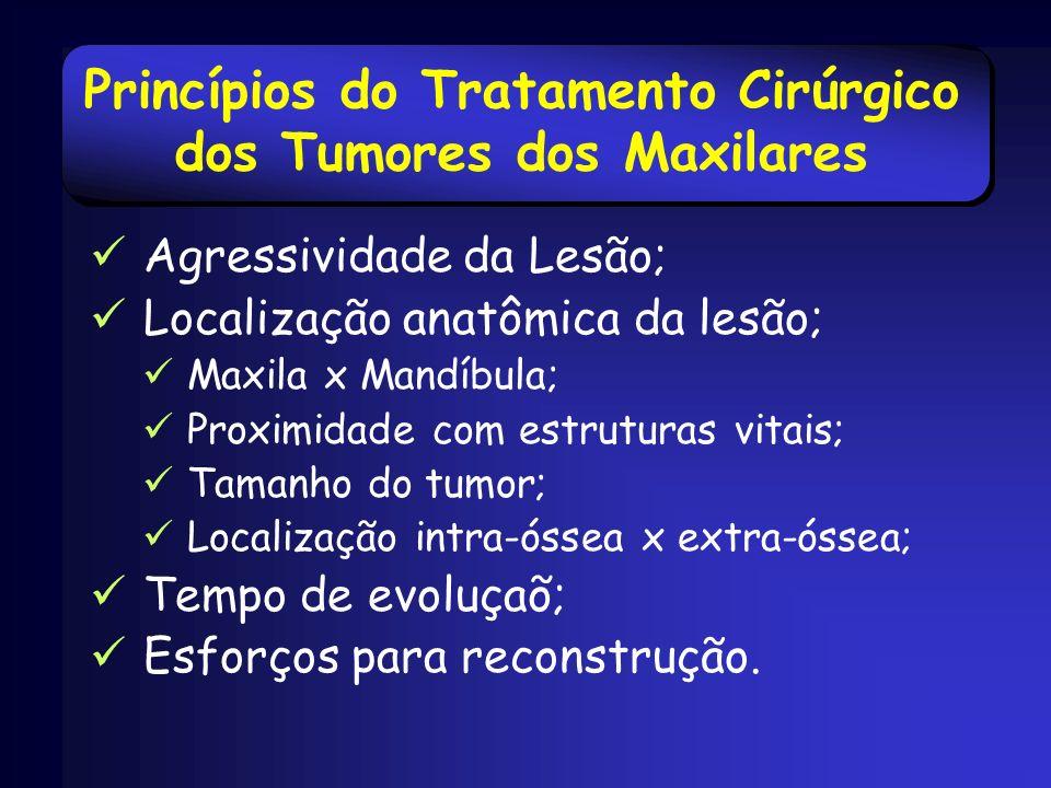 Princípios do Tratamento Cirúrgico dos Tumores dos Maxilares
