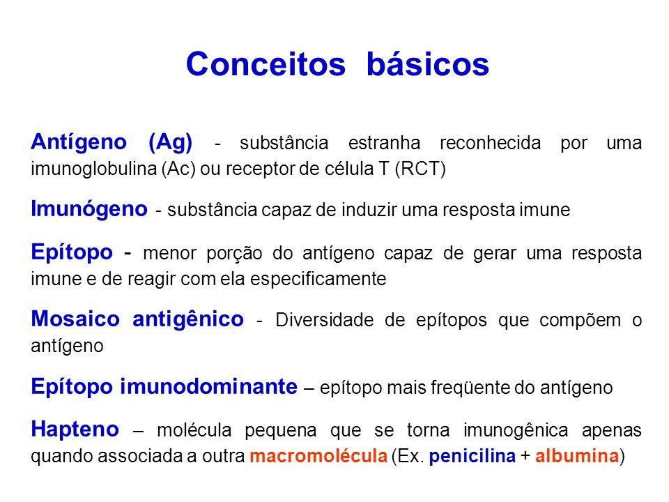 Conceitos básicos Antígeno (Ag) - substância estranha reconhecida por uma imunoglobulina (Ac) ou receptor de célula T (RCT)