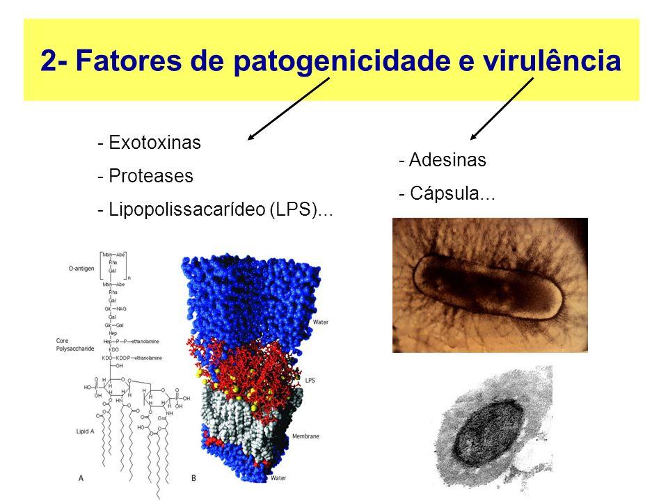 2- Fatores de patogenicidade e virulência