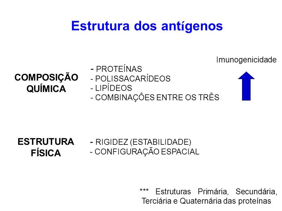 Estrutura dos antígenos