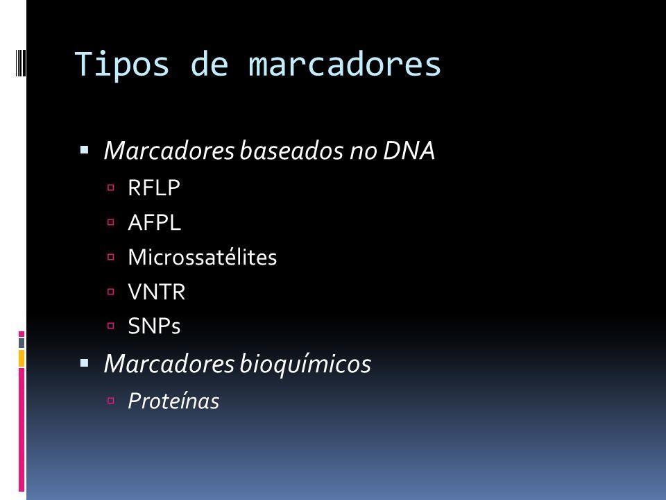Tipos de marcadores Marcadores baseados no DNA Marcadores bioquímicos