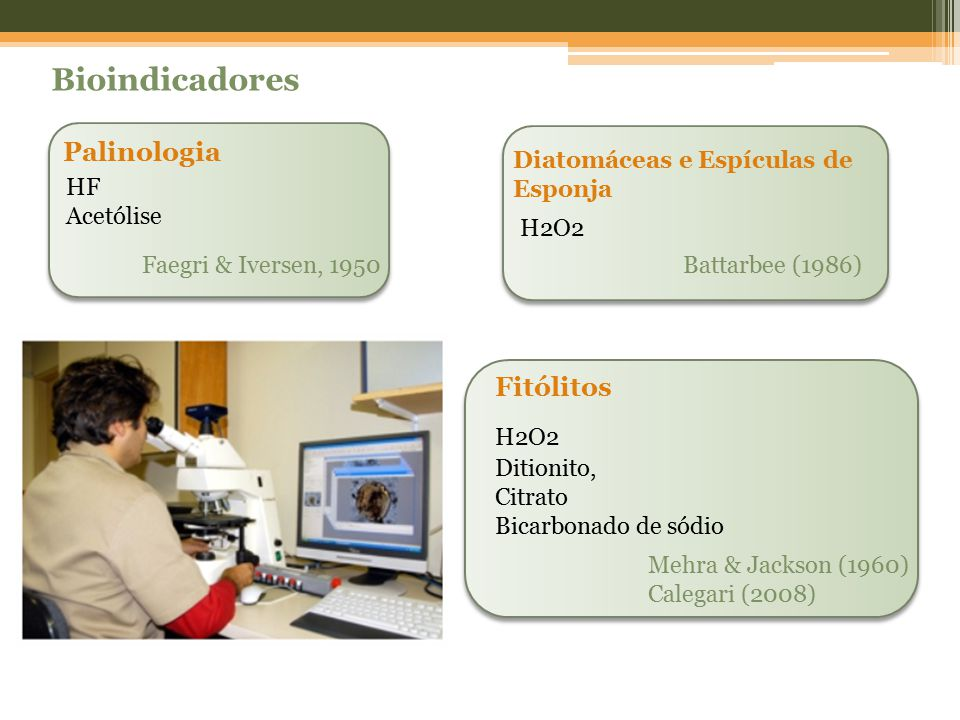 Bioindicadores Palinologia Fitólitos