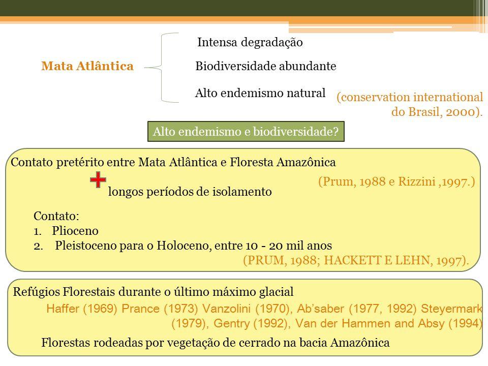 Biodiversidade abundante