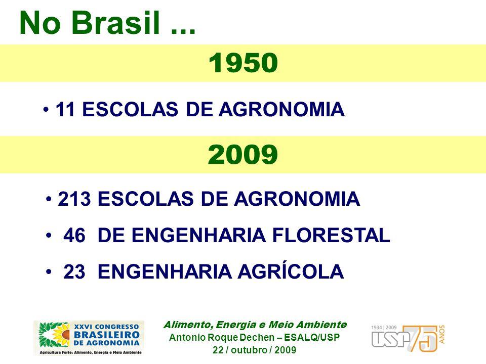 Alimento, Energia e Meio Ambiente Antonio Roque Dechen – ESALQ/USP