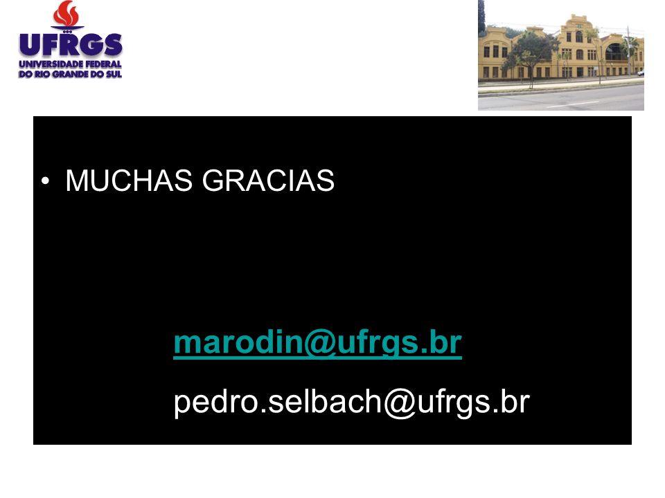 MUCHAS GRACIAS marodin@ufrgs.br pedro.selbach@ufrgs.br