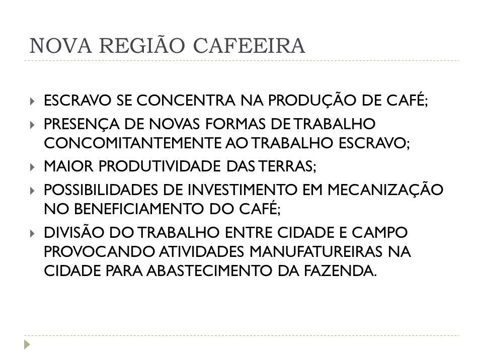 NOVA REGIÃO CAFEEIRA ESCRAVO SE CONCENTRA NA PRODUÇÃO DE CAFÉ;