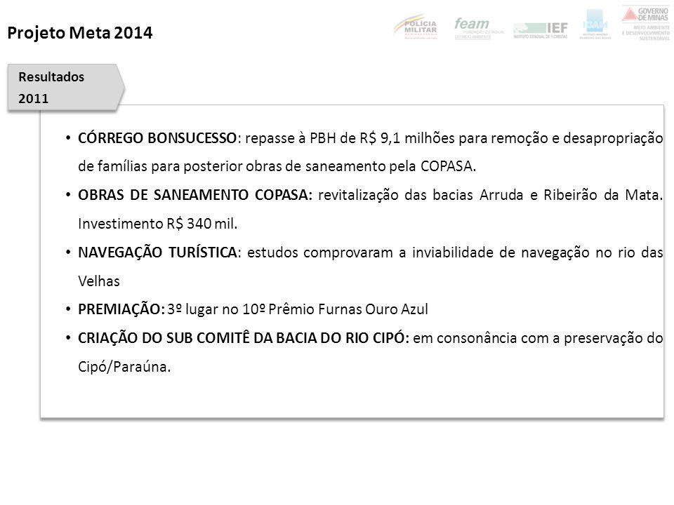 Projeto Meta 2014 Resultados. 2011.