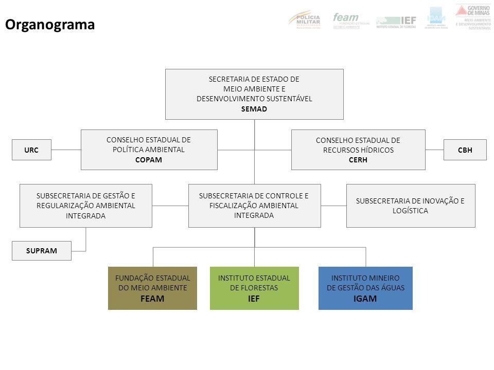 Organograma FEAM IEF IGAM SECRETARIA DE ESTADO DE MEIO AMBIENTE E