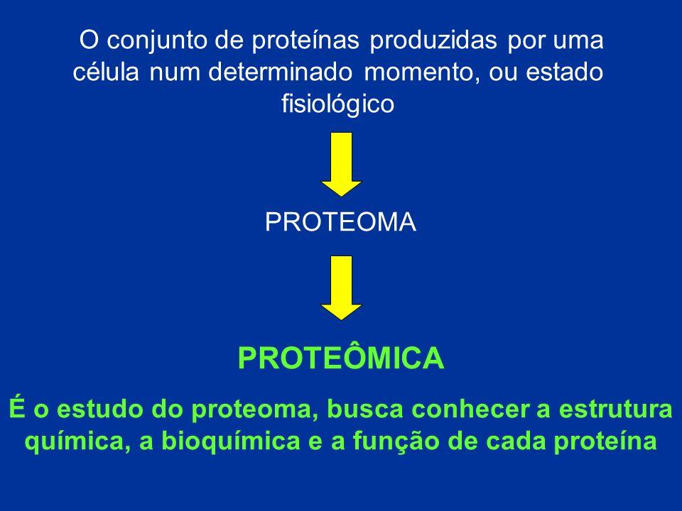 O conjunto de proteínas produzidas por uma célula num determinado momento, ou estado fisiológico