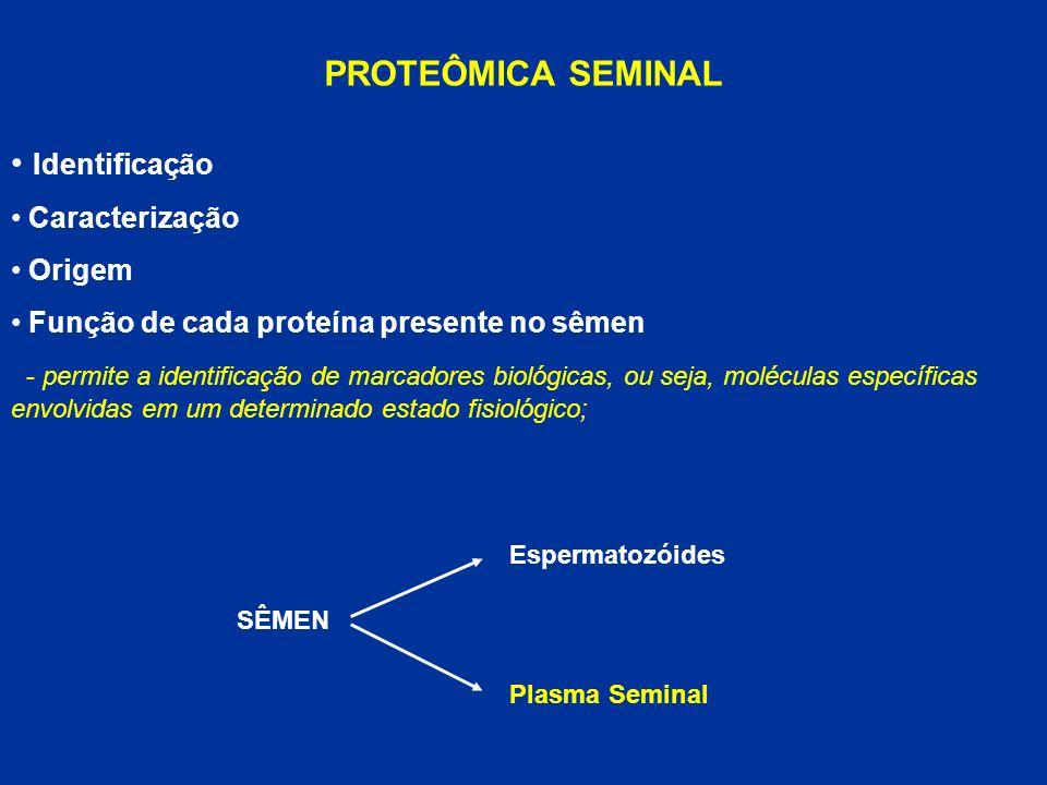 PROTEÔMICA SEMINAL Identificação Caracterização Origem