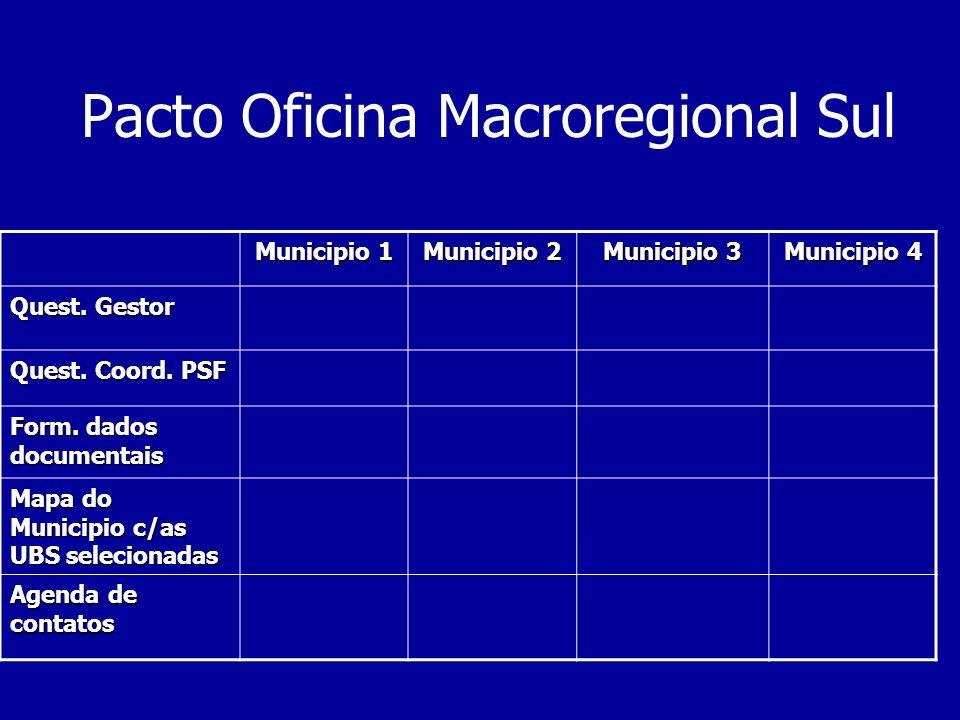 Pacto Oficina Macroregional Sul