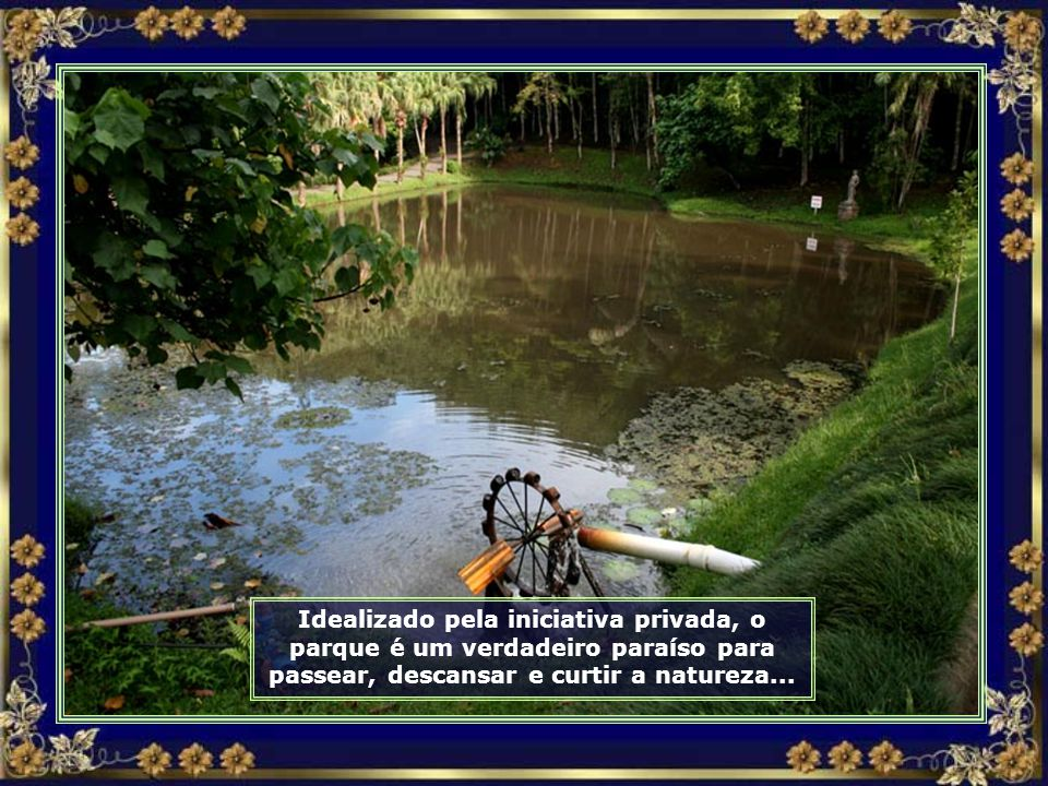 IMG_0040 - JARAGUÁ DO SUL - PARQUE MALWEE - RODA DÁGUA-690