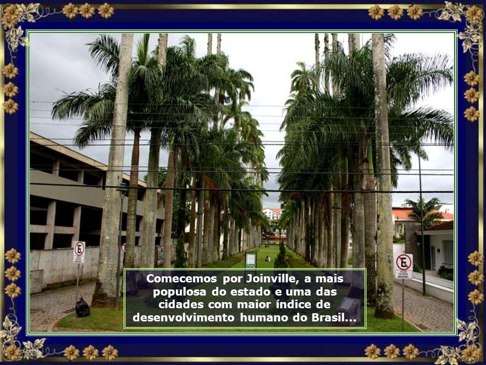 IMG_9873 - JOINVILLE - RUA DAS PALMEIRAS IMPERIAIS-690