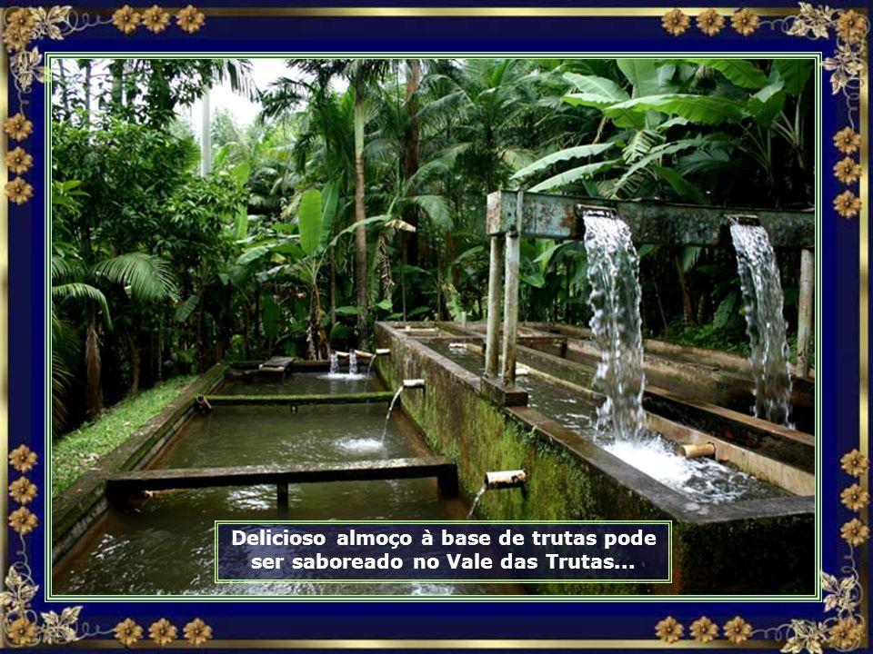 IMG_0166 - RODEIO - ALMOÇO NO VALE DAS TRUTAS-690.jpg